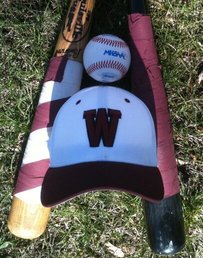 Watervliet High School Varsity Baseball beat Fennville High School 7-0