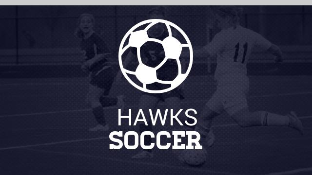 Skyview High School Girls Varsity Soccer beat Mountain Home High School 8-1