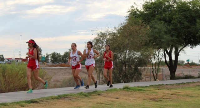 Cross Country Battles Hard in Loss in First Meet