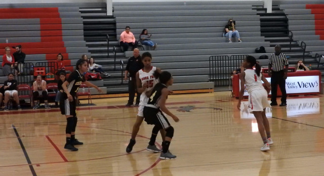 Lady Owls come up short at playoffs