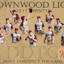 16-17 Lions Baseball