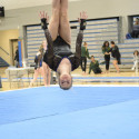 PHOTOS: Gymnastics @ Sections (02-16-2017)