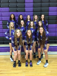 Volleyball All-Division Team awards