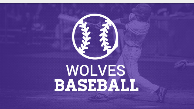 TC Baseball Spotlight: Dream Season