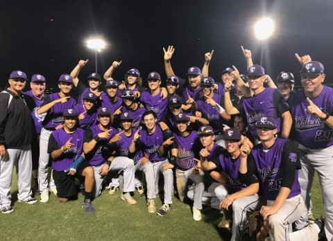 TC Baseball – Metro, District and Regional Champions!