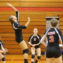 Volleyball 2014