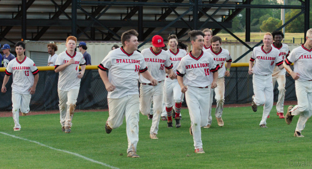 Stallions Baseball Headed to State