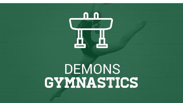 Gymnastics Celebrates Record Breaking Year