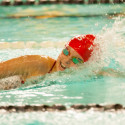 HCC Swimming & Diving – Photo Gallery