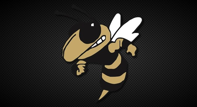 All Area Teams for Fall Sports – Hornets led by Daniel Bolan