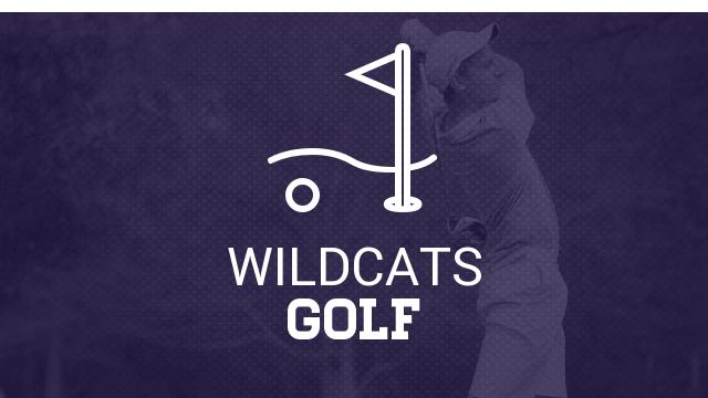 Wildcats struggle in first match