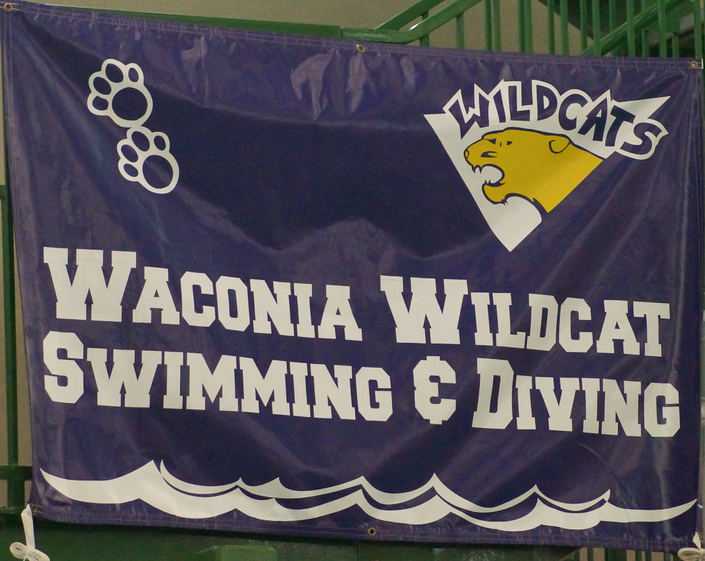Swimmers and Diver Advance to State!