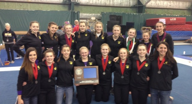 Gymnasts Earn Section 2A Runner-Up