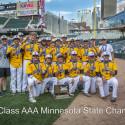 Wildcat Baseball Class AAA 2017 State Tournament Pictures vs. Mahtomedi, Marshall, & Hibbing by Tim Kruse