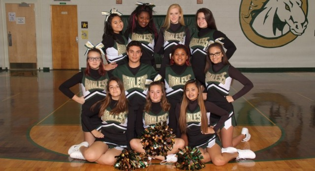 Winter Cheer Team