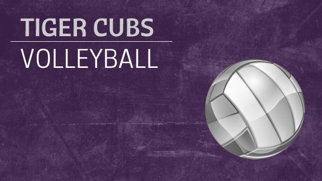 Senior Night at Volleyball … Tonight