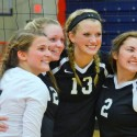 2015 Volleyball County Tournament