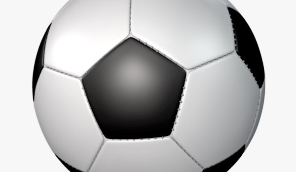 Boys Soccer Season Ends in Sectional Semi-Final