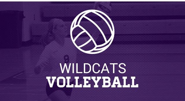 2017 High School Volleyball Information