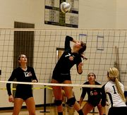Lady Dawg Volleyball Preview