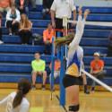 Varsity Volleyball vs Hamilton Heights