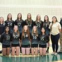 2015 JV Volleyball Team