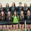 2015 Varsity Volleyball Team