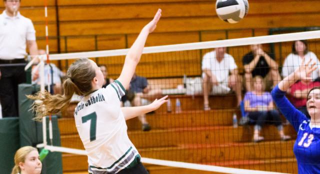 Haley Raible Receives Lorain County Honors for Senior Season