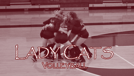 Lady Cat Volleyball Camp