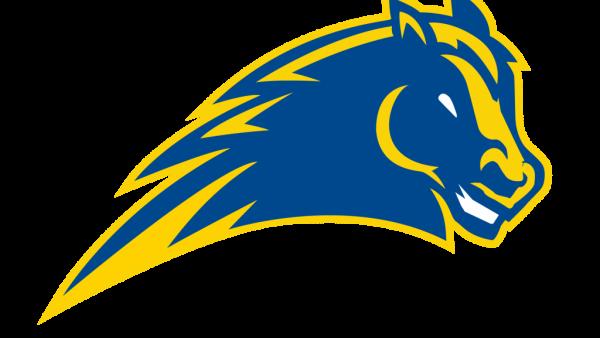 *Logo -Mustang