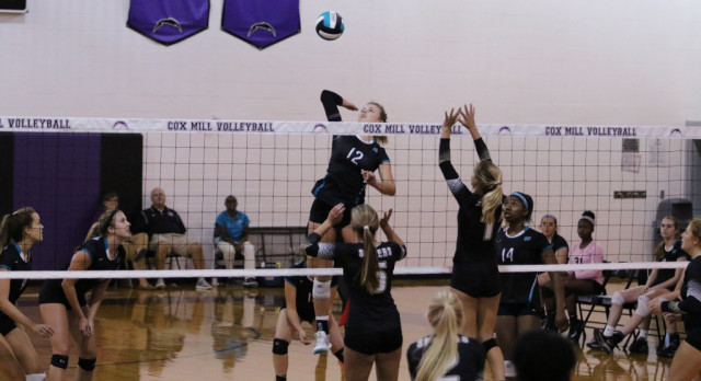 Volleyball Sweeps Concord