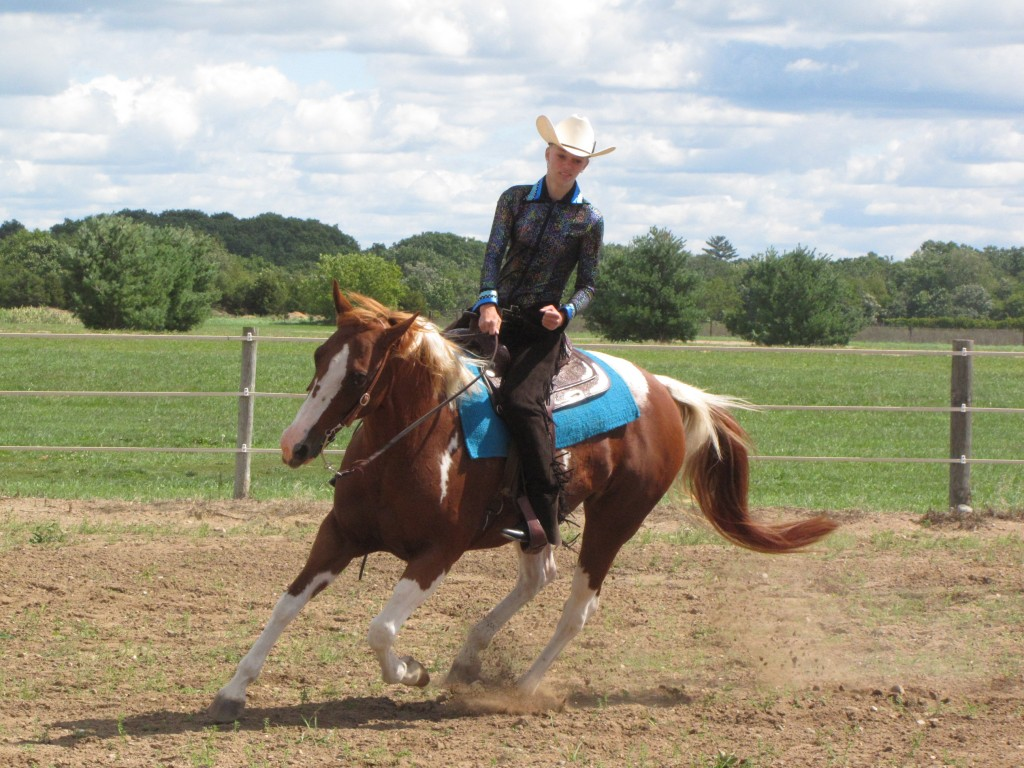 Upcoming Equestrian Shows