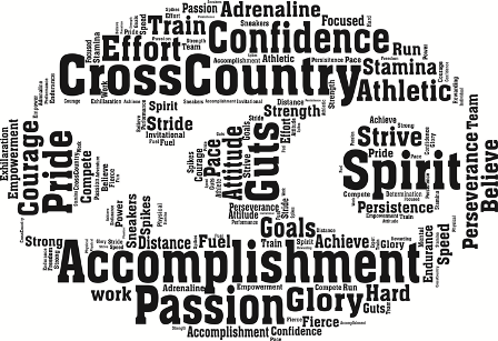 2017 CROSS COUNTRY SCHEDULE