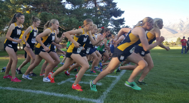 XCtry Teams Qualify for State