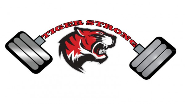 New-TIger-Strong
