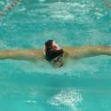 Tiger Swim Meet 10-15-16