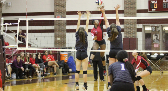 Lady Tigers end season with loss to Plano West in Area Finals