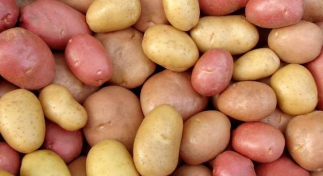 Wrestling – Potato Fundraiser {ends Fri 10/7}
