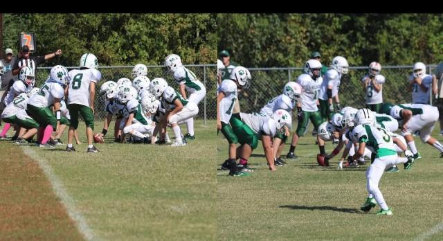 9U and 12U Bucs Take on the Wildcats