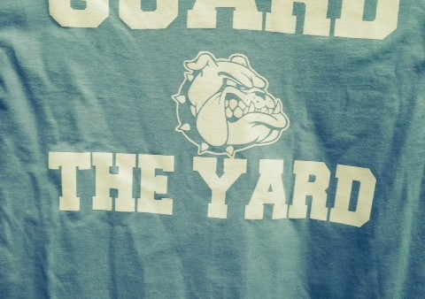 guardtheyard