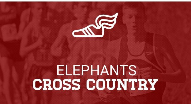 Cross Country Region 8 6A Championship In Winder Today