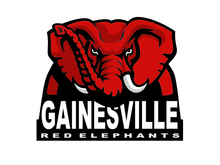 Bailey Minor Named Gainesville Player Of The Week