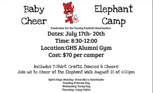 Baby Elephant Cheer Camp 2017