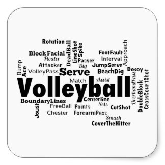 Volleyball NEWS!