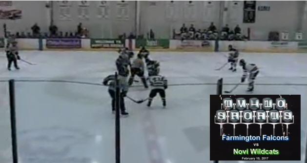 TV 10 Falcons Hockey vs Novi
