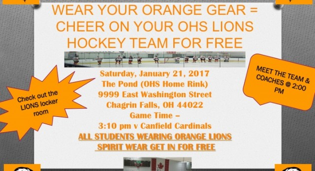 Lions Hockey Spirit Day