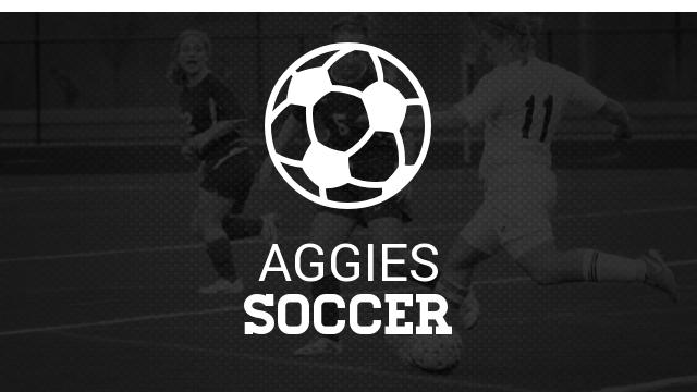 MHSAA Girls' Soccer Districts