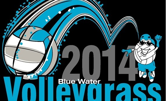 2014 BLUE WATER VOLLEYGRASS FESTIVAL!