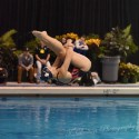 PHOTOS:  Roman at MHSAA Div 1 Diving State Meet 11-19-16 (photos: T Dalton)