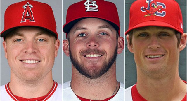 Former Panthers Chasing Big League Dreams